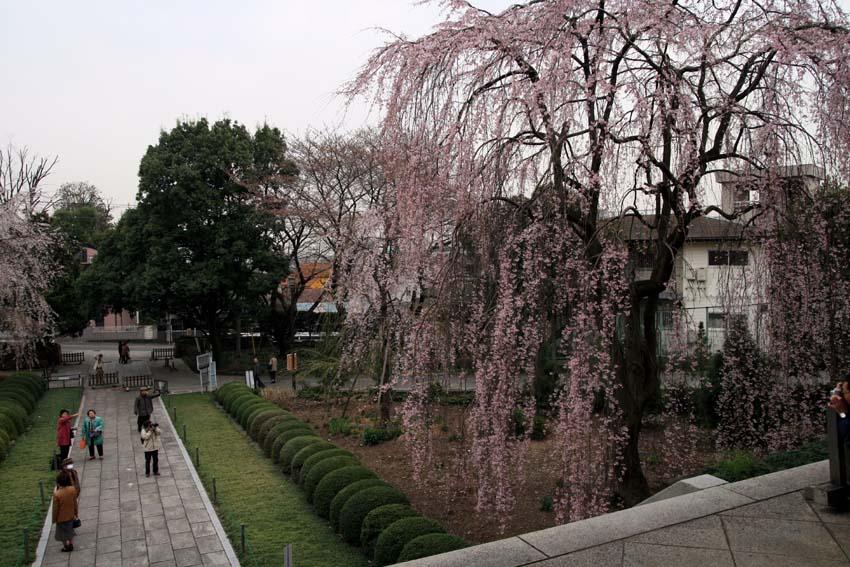 2007東郷寺002.jpg