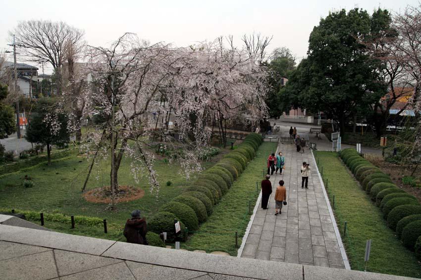 2007東郷寺003.jpg